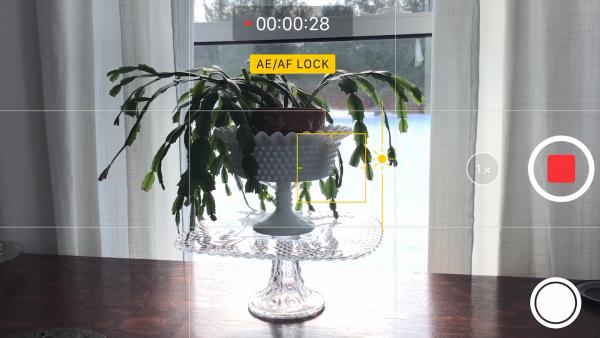 Exposure Lock And Focus Lock On Iphone