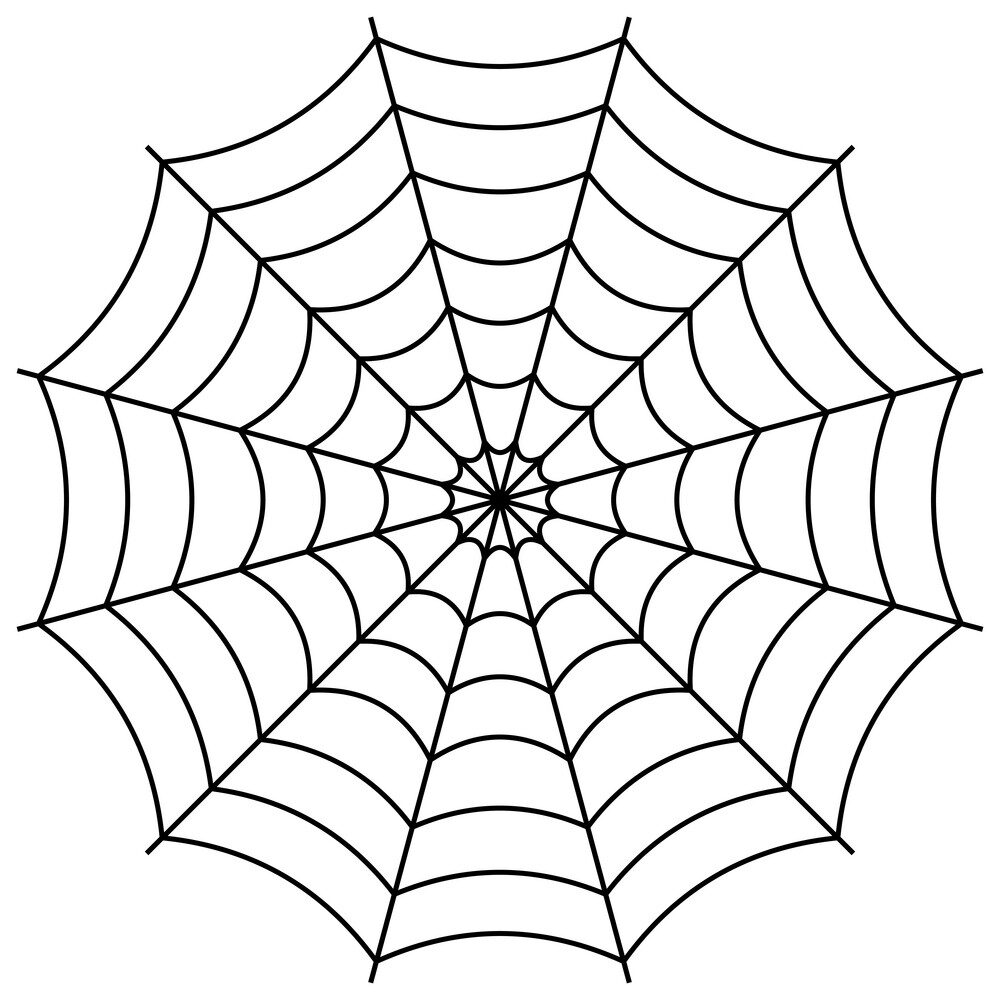"""Well, the growth strategy I teach my clients and students is called """"The Spider Web Effect."""""""
